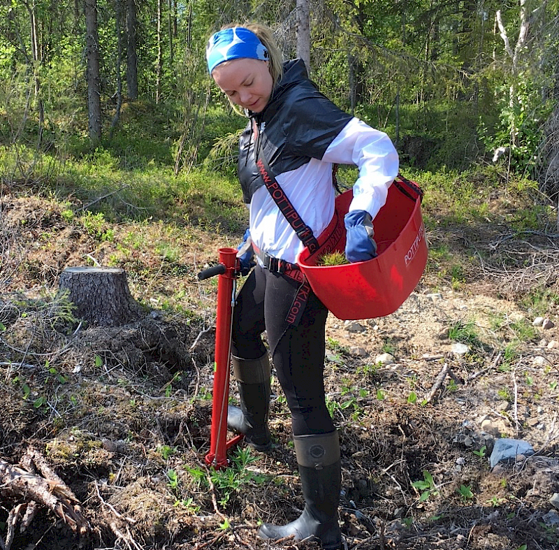 Jari Alatalo Rovaniemi